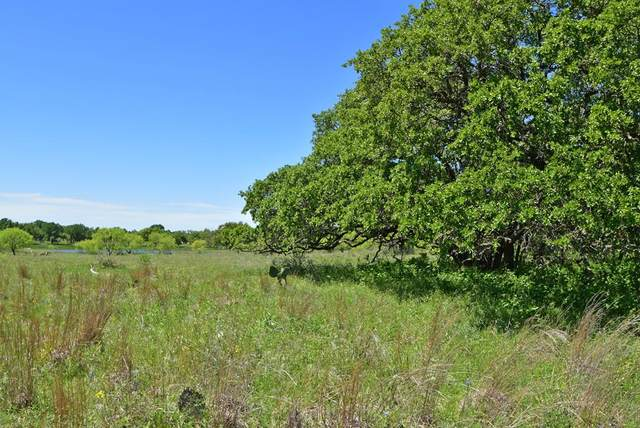 10 -- Slate Rock Rd, Willow City, TX 78675 (MLS #77223) :: Reata Ranch Realty