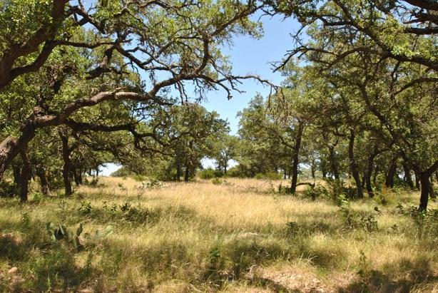 16 -- Sugar Creek Trail, Fredericksburg, TX 78624 (MLS #69293) :: Absolute Charm Real Estate