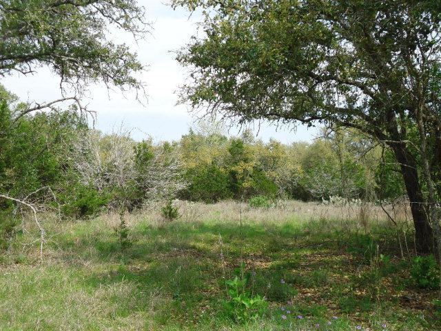142 -- Abierto Cove Dr, Blanco, TX 78606 (MLS #71460) :: Absolute Charm Real Estate