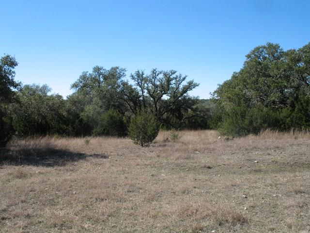 275 -- Cielo Springs Dr, Blanco, TX 78606 (MLS #73143) :: Absolute Charm Real Estate