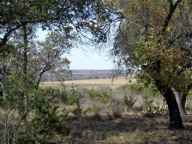 0 -- Highridge Lane, Fredericksburg, TX 78624 (MLS #74884) :: Absolute Charm Real Estate