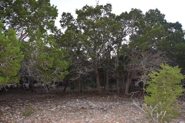 105 W Pond Creek Lane, Hunt, TX 78025 (MLS #75008) :: Absolute Charm Real Estate
