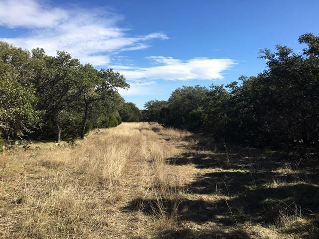 170 -- Harper Valley Rd, Harper, TX 78631 (MLS #75125) :: Absolute Charm Real Estate