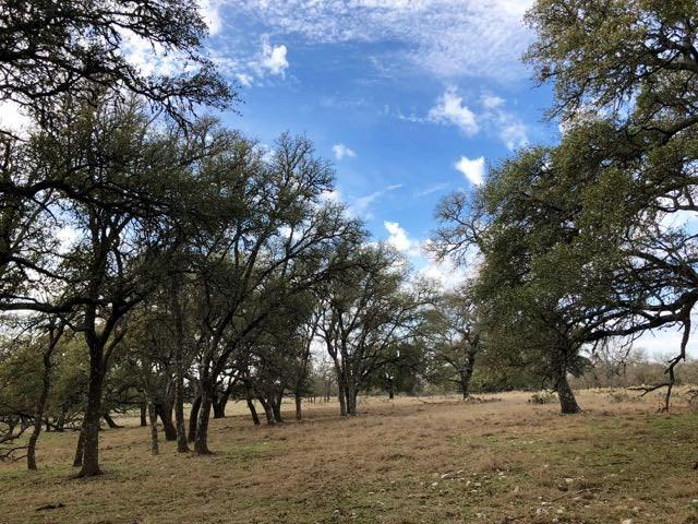 365 -- Dally Rd, Fredericksburg, TX 78624 (MLS #75283) :: Absolute Charm Real Estate