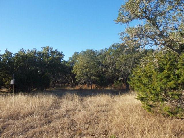 0 -- Seven Falls Ranch Rd, Fredericksburg, TX 78624 (MLS #75785) :: Absolute Charm Real Estate