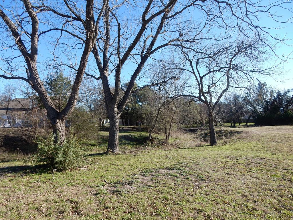1206 Spotted Fawn Trail - Photo 1