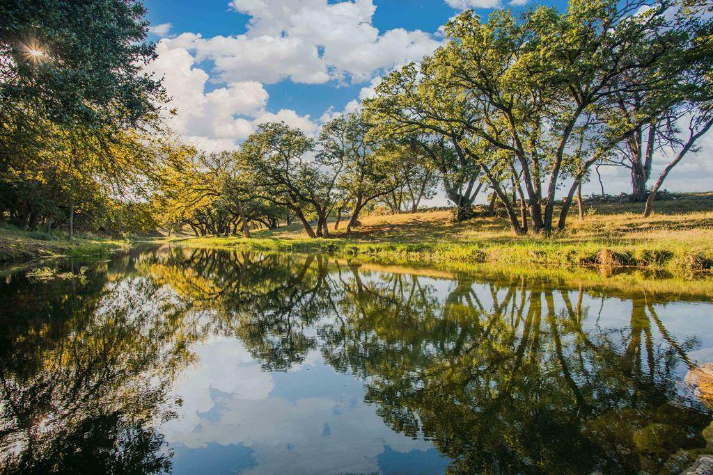 750 Creel Creek Rd. - Photo 1