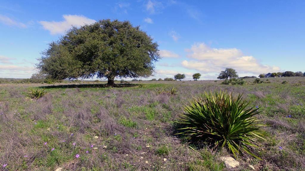 0 Ranch Rd 783 - Photo 1