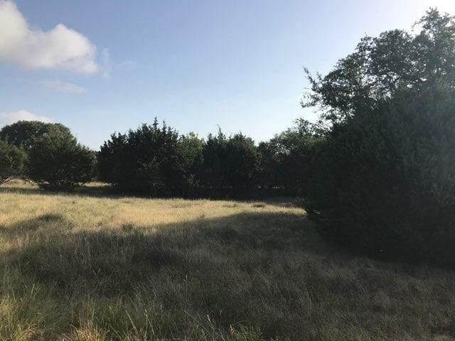 439 S Calvin Barrett, Blanco, TX 78606 (MLS #80362) :: Reata Ranch Realty