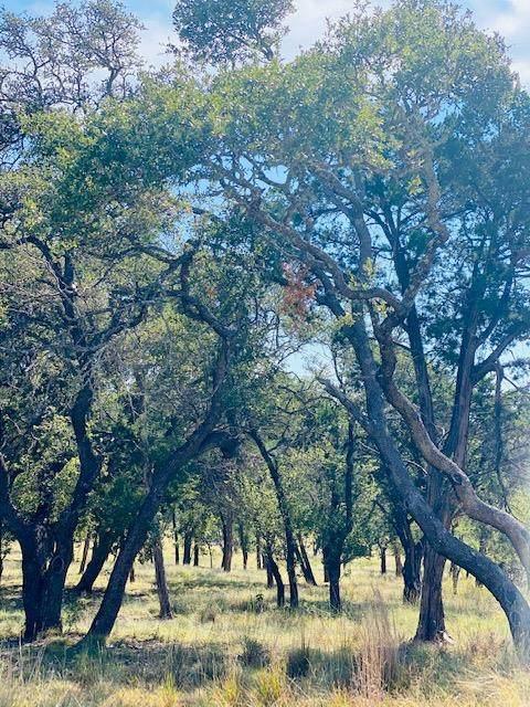 0013 -- Lower Crabapple Rd, Fredericksburg, TX 78624 (MLS #80492) :: Reata Ranch Realty