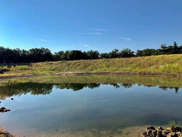 00 -- Mystic Oaks Trail, Fredericksburg, TX 78624 (MLS #80586) :: Reata Ranch Realty