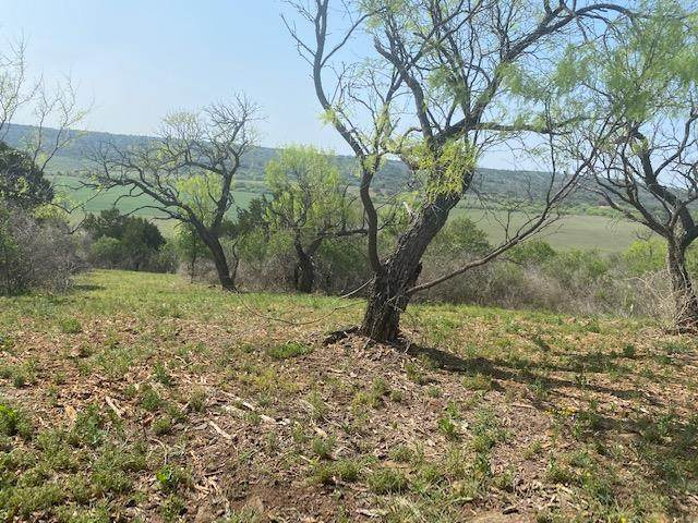 CDEF -- Ischar Lane, Mason, TX 76856 (MLS #81889) :: Reata Ranch Realty