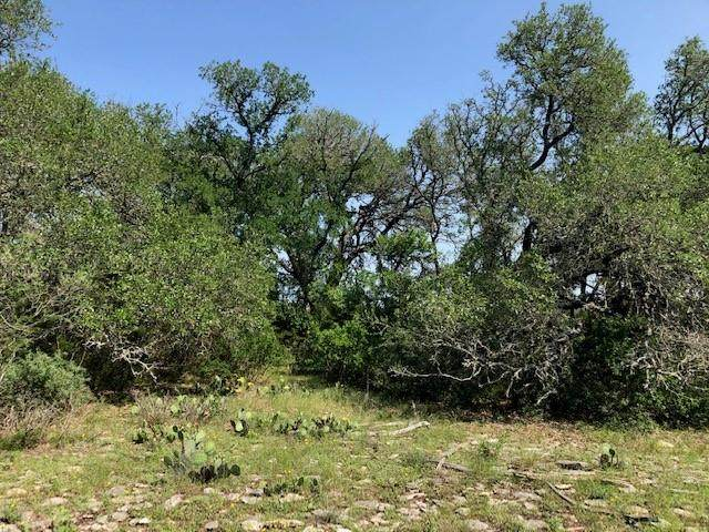 TBD -- George Dolson, Blanco, TX 78606 (MLS #82008) :: Reata Ranch Realty