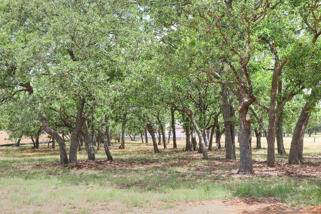 2207 Stone Meadow - Photo 1