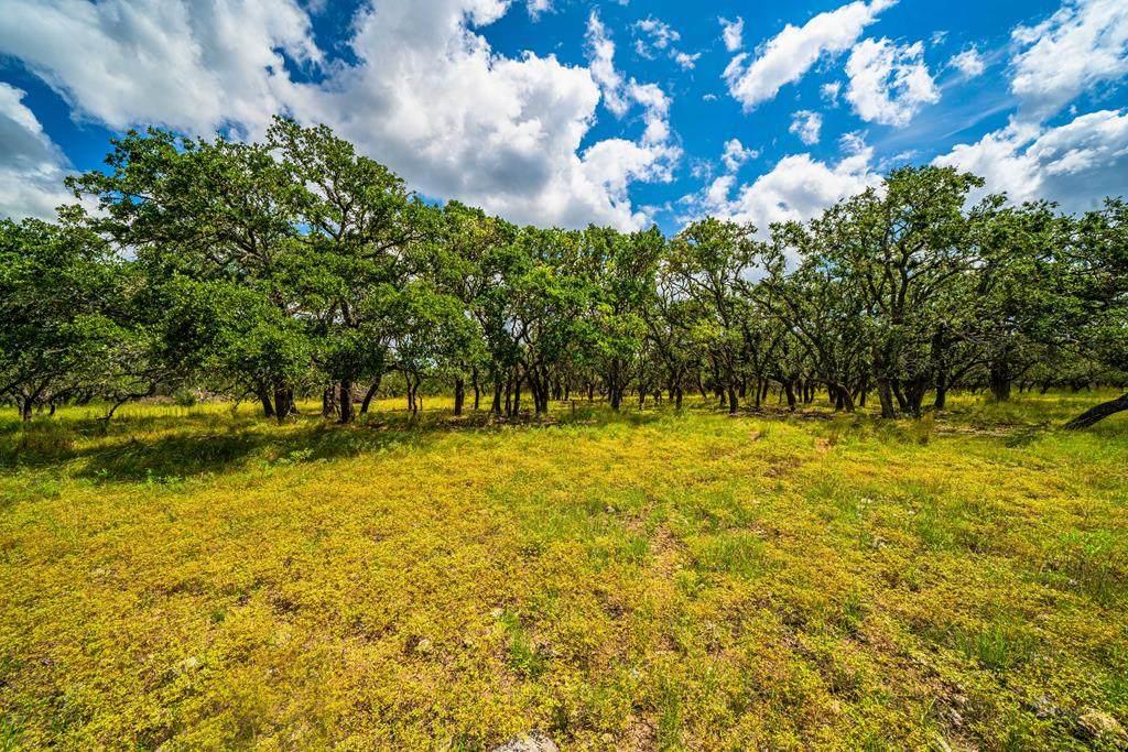 7 Black Jack Ranch Rd - Photo 1