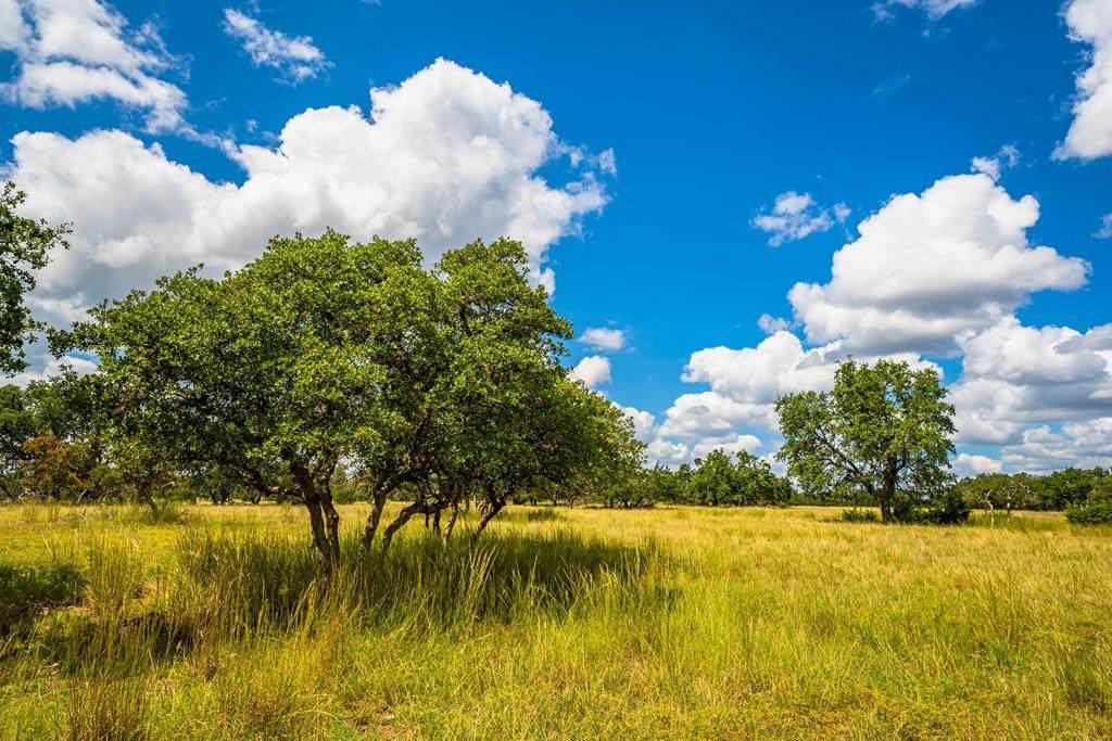 17 Black Jack Ranch Rd - Photo 1