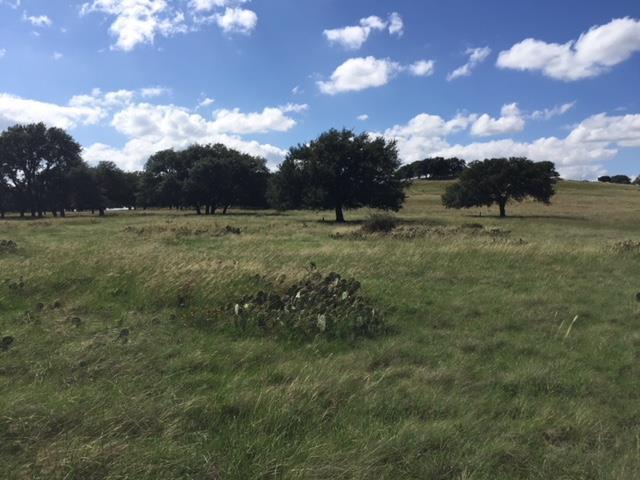 0 -- Vista View Lane, Fredericksburg, TX 78624 (MLS #75509) :: Absolute Charm Real Estate