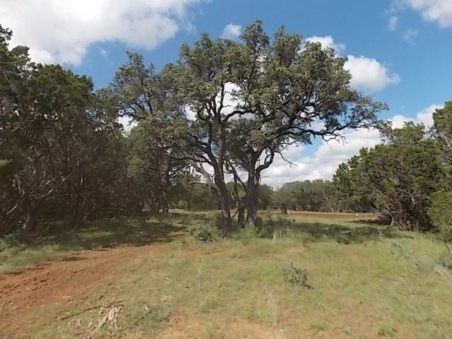 00 -- Doss-Cherry Spring Rd, Doss, TX 78618 (MLS #76624) :: Absolute Charm Real Estate