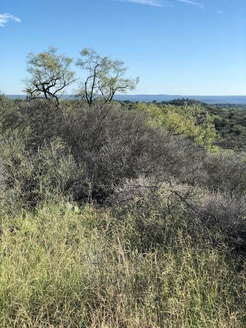DEF -- Ischar Lane, Mason, TX 76856 (MLS #81165) :: Reata Ranch Realty