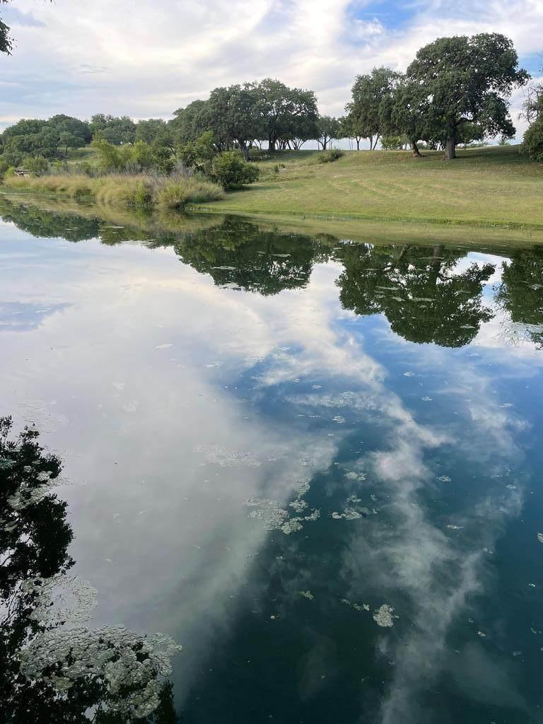 1317 River Rd - Photo 1