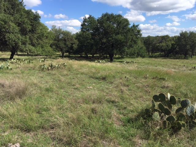 0 -- Vista View Lane, Fredericksburg, TX 78624 (MLS #75577) :: Absolute Charm Real Estate