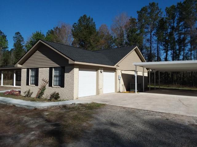 254 Bright Lakes Road, Hinesville, GA 31313 (MLS #126676) :: Coldwell Banker Holtzman, Realtors