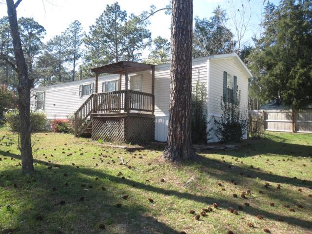 285 Willow Drive, Jesup, GA 31545 (MLS #126703) :: Coldwell Banker Holtzman, Realtors