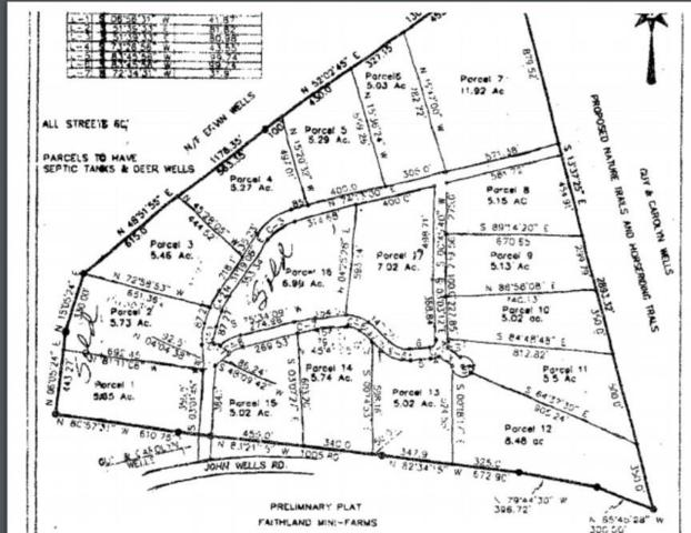 Lot 8 Faithland Drive, Hinesville, GA 31313 (MLS #127427) :: RE/MAX Eagle Creek Realty