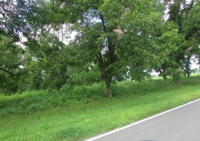 0 Dry Fork Road, Glennville, GA 30427 (MLS #128122) :: Coldwell Banker Holtzman, Realtors
