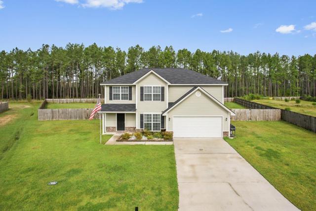 250 Pine View Drive Se, Ludowici, GA 31316 (MLS #128858) :: Coldwell Banker Holtzman, Realtors