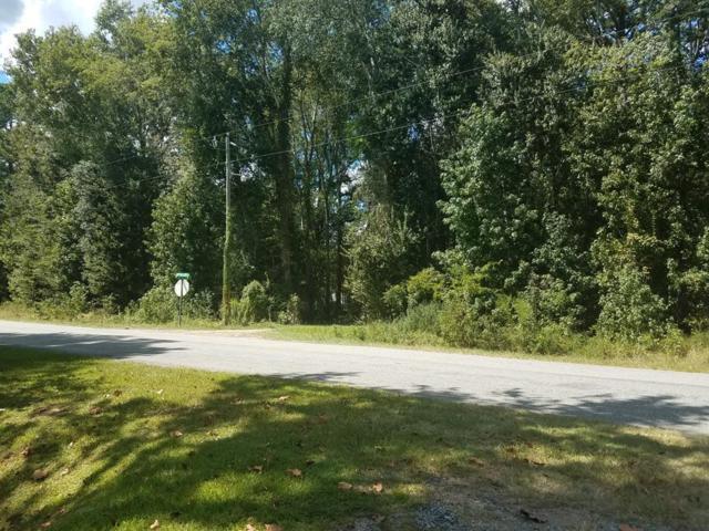 0 Big Star Lane, Midway, GA 31320 (MLS #128859) :: Coldwell Banker Holtzman, Realtors