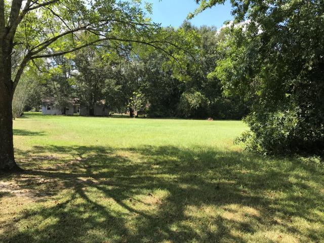 0 Buffy K. Drive, Glennville, GA 30427 (MLS #128887) :: Coldwell Banker Holtzman, Realtors