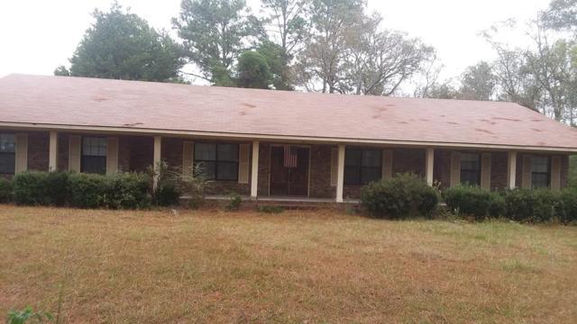9146 Highway 23, Glennville, GA 30427 (MLS #129306) :: Coldwell Banker Holtzman, Realtors
