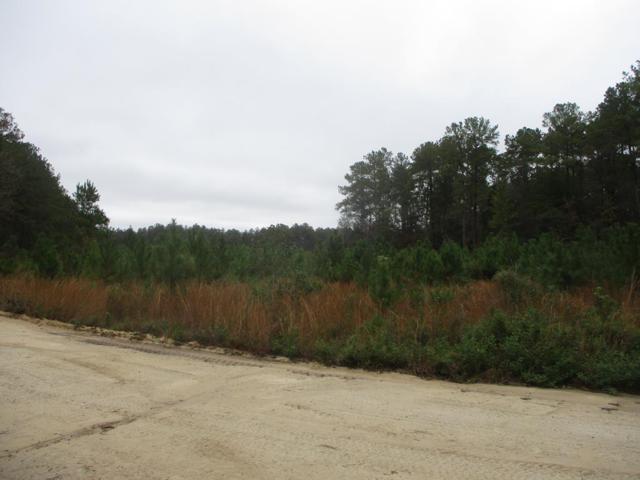 5 Acres Dewey Rush Landing Road, Glennville, GA 30427 (MLS #129498) :: Coldwell Banker Holtzman, Realtors