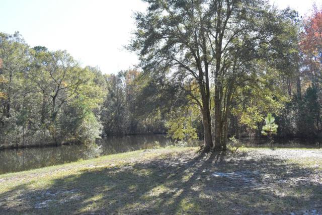 5.5 ACRE Hodges Road, Hinesville, GA 31313 (MLS #129570) :: Coldwell Banker Holtzman, Realtors
