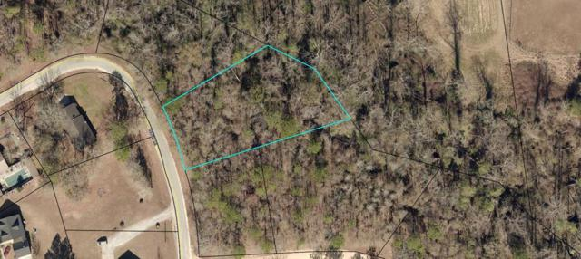 Lot 4 Lakeview Drive, Glennville, GA 30427 (MLS #130145) :: Coastal Homes of Georgia, LLC