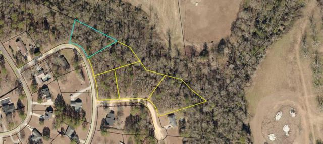 Lots 3-7 Lakeview Drive, Glennville, GA 30427 (MLS #130154) :: Coastal Homes of Georgia, LLC