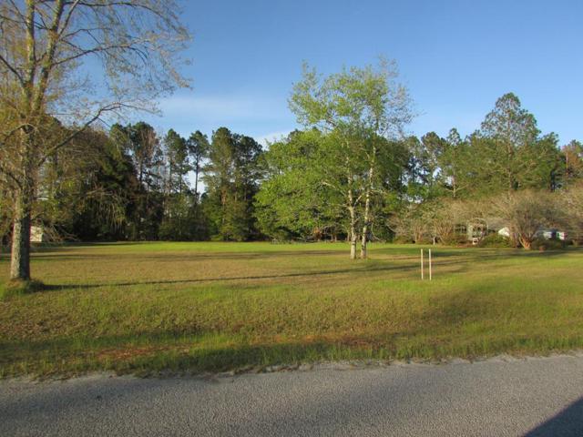 0 Merganser Circle, Glennville, GA 30427 (MLS #130595) :: Coldwell Banker Holtzman, Realtors