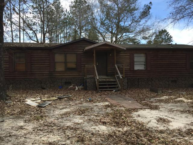 113 Turpentine Road, Ludowici, GA 31316 (MLS #130765) :: RE/MAX All American Realty