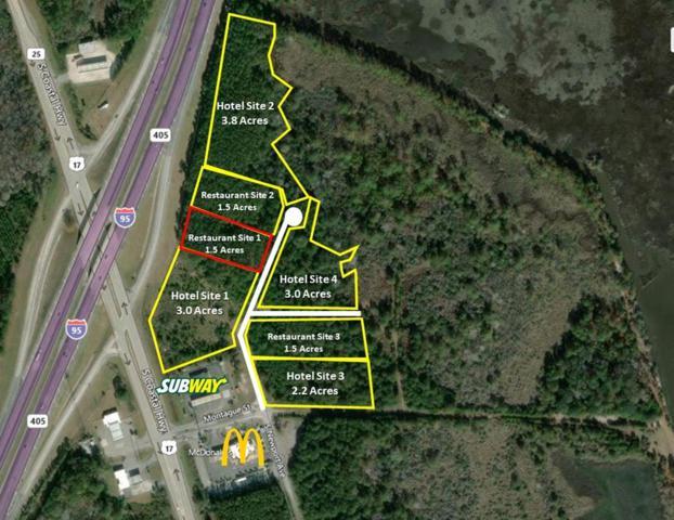 Site 1 South Newport Drive, RICEBORO, GA 31323 (MLS #131804) :: Coldwell Banker Holtzman, Realtors