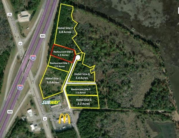 Site 2 South Newport Drive, RICEBORO, GA 31323 (MLS #131805) :: Coldwell Banker Holtzman, Realtors