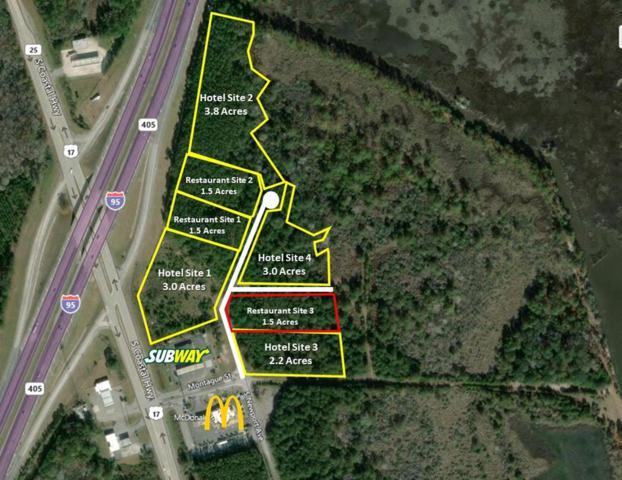 Site 3 South Newport Drive, RICEBORO, GA 31323 (MLS #131807) :: Coldwell Banker Holtzman, Realtors