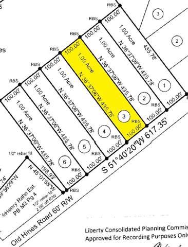 Lot 3 Old Hines Road, Flemington, GA 31313 (MLS #132668) :: Coldwell Banker Holtzman, Realtors