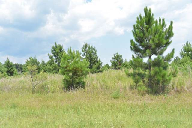 LOT 42 Willow Oak Lane, Garfield, GA 30420 (MLS #132809) :: Level Ten Real Estate Group