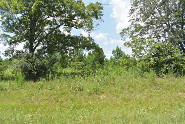 LOT 44 Willow Oak Lane, Garfield, GA 30420 (MLS #132813) :: Level Ten Real Estate Group