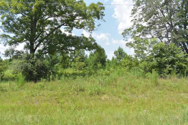 LOT 47 Willow Oak Lane, Garfield, GA 30420 (MLS #132823) :: Level Ten Real Estate Group