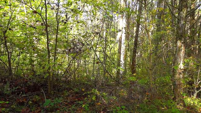 Lot 3 Kings Road, Midway, GA 31322 (MLS #132922) :: Coldwell Banker Southern Coast