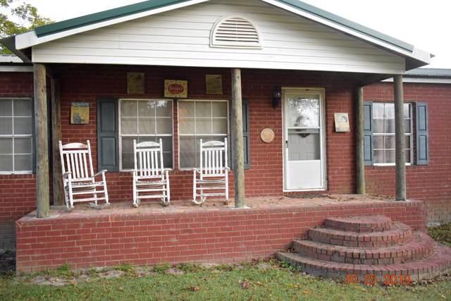 1868 George Swindell Road Ne, Ludowici, GA 31316 (MLS #132927) :: Coldwell Banker Holtzman, Realtors