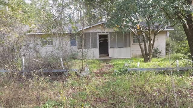 6580 Ben Grady Collins Road, Portal, GA 30450 (MLS #132946) :: Coldwell Banker Holtzman, Realtors