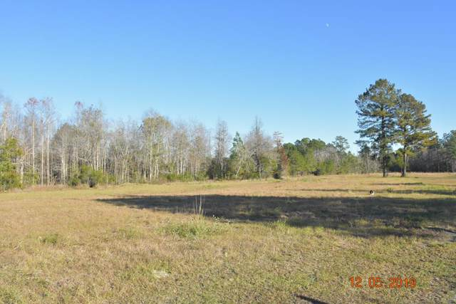 LOT 2 Rufus Davis Road Ne, Ludowici, GA 31316 (MLS #133175) :: RE/MAX All American Realty